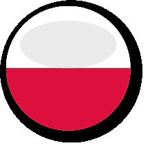 polnisch zu deutsch übersetzung von dokumenten